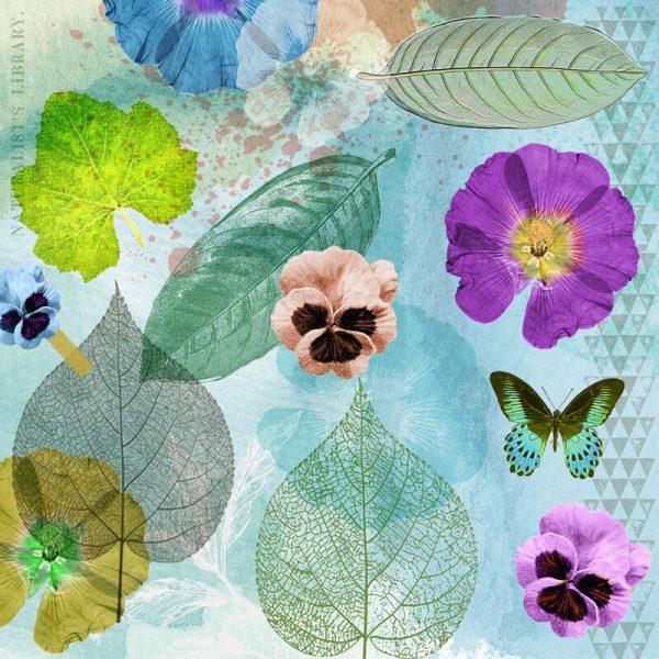 Frida_Plants3